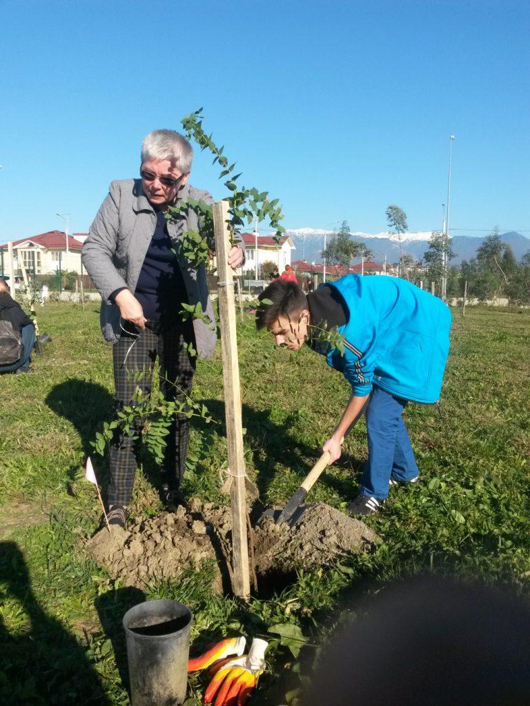 Высадка деревьев в орнитрлогическом парке
